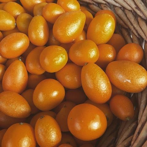 Kumquat: Small fist, Big PUNCH